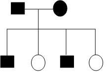 نمونه کار ژنتیک هفت خوان زیست شناسی-img